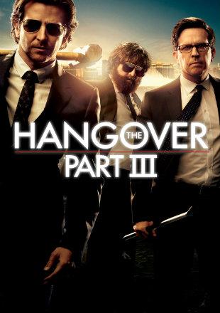 The Hangover Part III 2013 BRRip 1080p Dual Audio In Hindi English