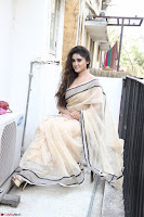 Sony Charishta in Brown saree Cute Beauty   IMG 3601 1600x1067.JPG