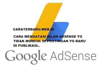 Cara Mengatasi Iklan AdSense Tidak Muncul Di Postingan Yang Baru Dipublikasi