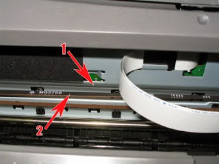 1. encoder strip  2.  band that moves the cartridge carriage