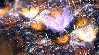 Beautiful-fractals-drawing-art-work-of-flower-digital-painting-picture.jpg