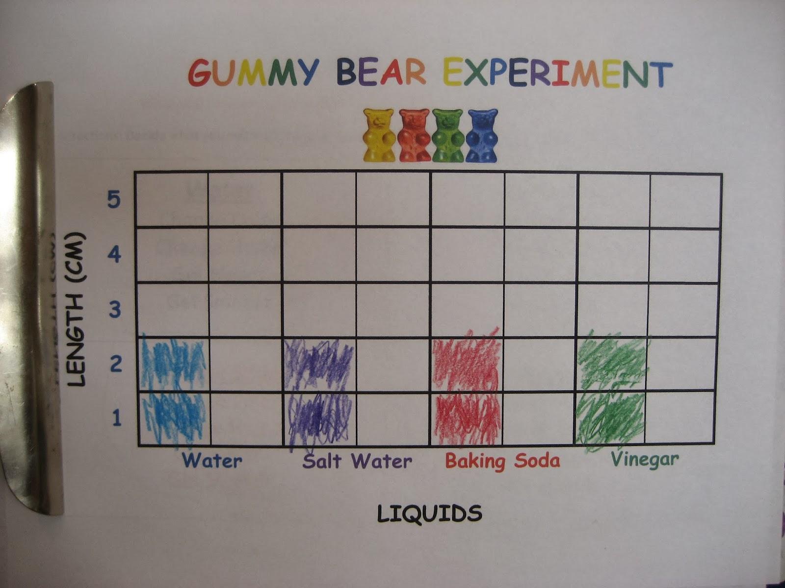 Printables Of Gummy Bear Experiment Worksheet