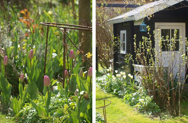 Familievenlig have med legehus og blomster