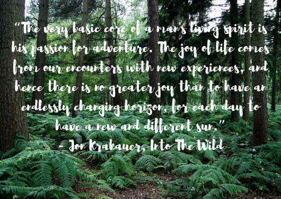 Kitsune Kennedy Three Life Lessons I Learned From Into The Wild
