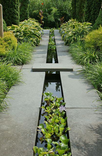 iaz longitunial, ax apa, fantana cu plante, gradina de apa, design gradina, idei, inspiratie, cum se construieste