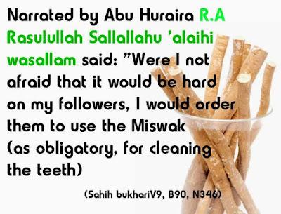 Miswak Benefits
