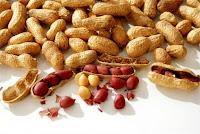 Amendoim fruta