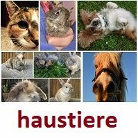 Unsere Haustiere - linkparty