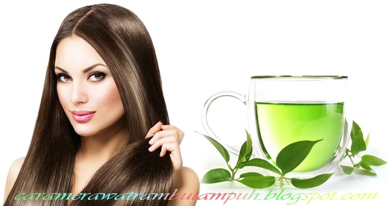 Teh hijau untuk rambut rontok