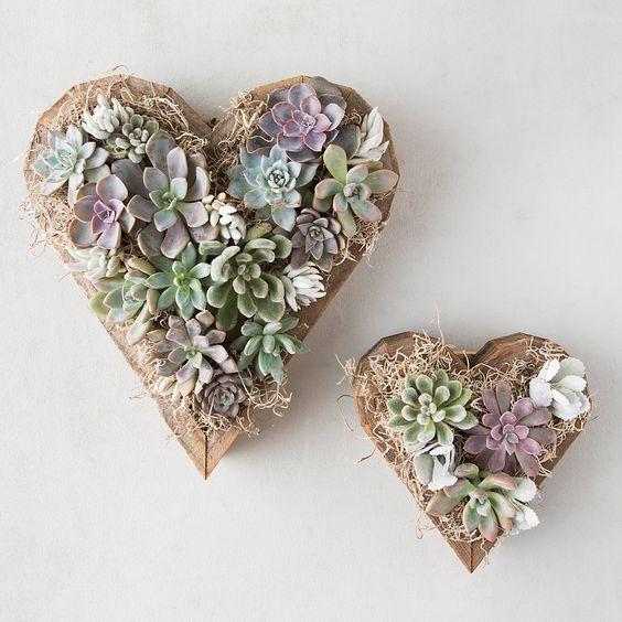 heart shaped succulent planters