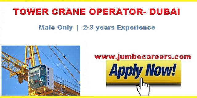 crane operator jobs in dubai salary,  crawler crane operator jobs in uae,  tower crane operator salary in dubai