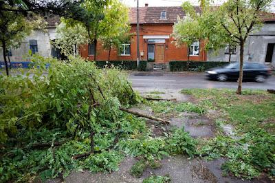 Bukarest, extrém időjárás, időjárás, ítéletidő, Románia, viharkárok, viharmérleg
