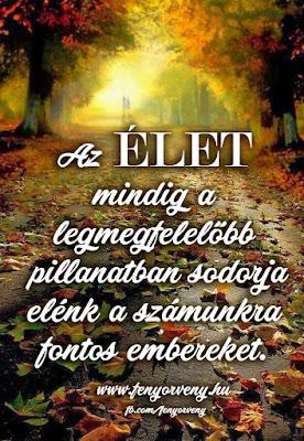 Az Élet mindig...