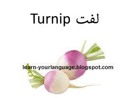 لفت : Turnip