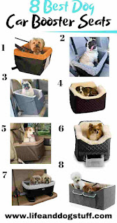 8 Best Dog Car Booster Seats Review