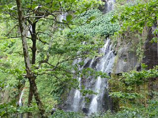 Anse des cascades - Sainte Rose - île de la Réunion