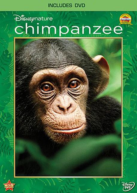 Chimpanzee – Chimpancés [DVD5] [Latino]