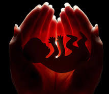 ABORTO NO 3º MÊS NÃO É CRIME (?)