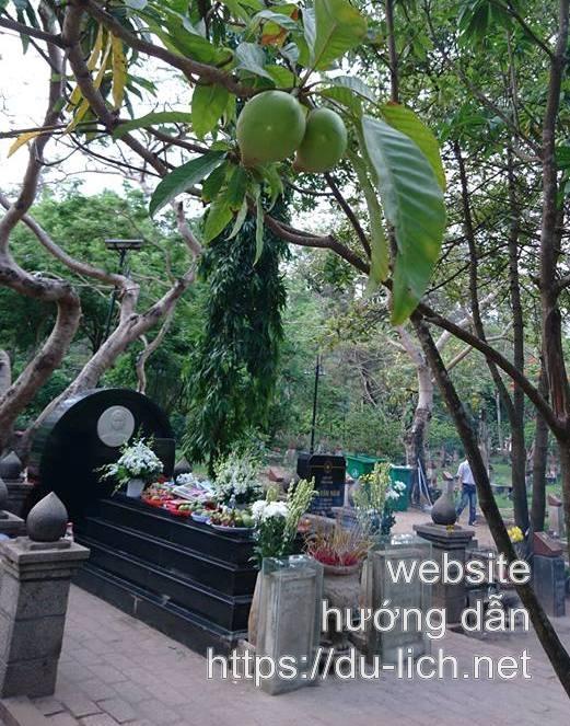Mộ chị Võ Thị Sáu ở Côn Đảo, trước mộ là cây lê ki ma đang đậu trái