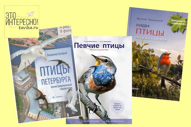 список книг о птицах для бердвотчинга