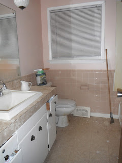 Barbara S Spot On The Blog Bathroom Renovation And Faux