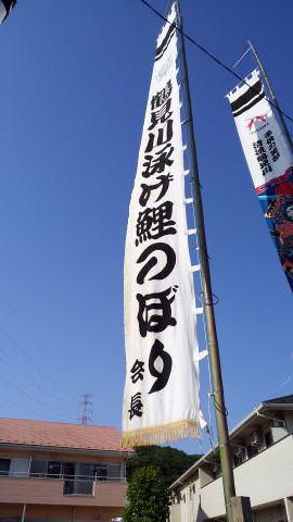 町田の鶴見川の鯉のぼり