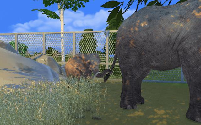 télécharger éléphanteau sims 4