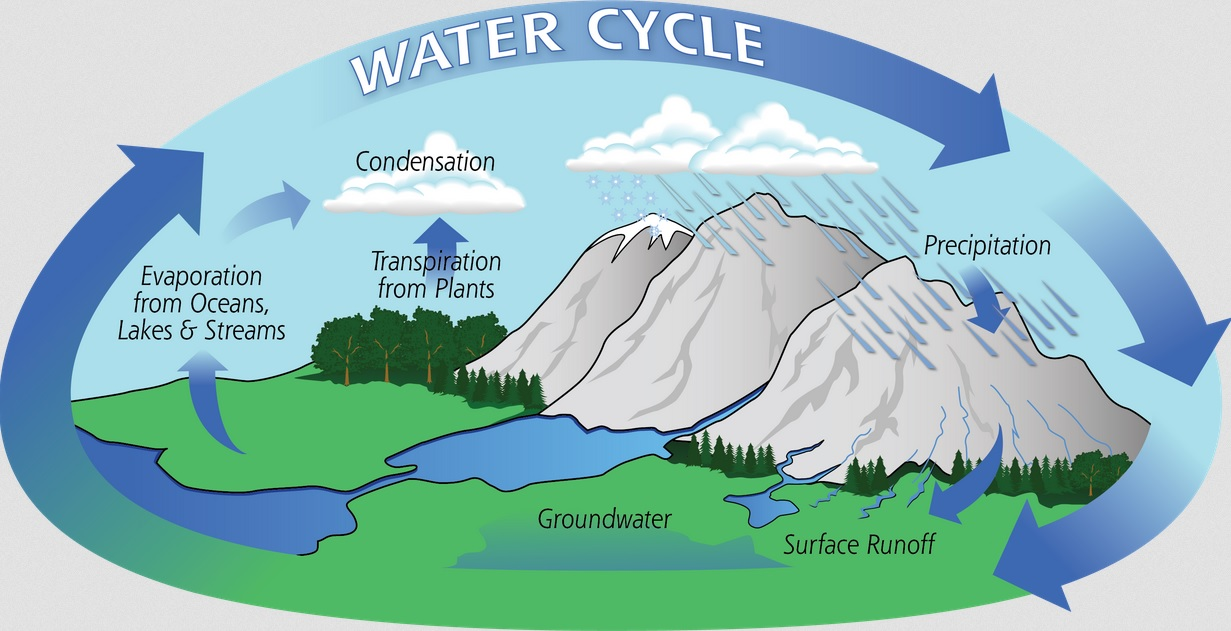 The water cycle ccuart Choice Image
