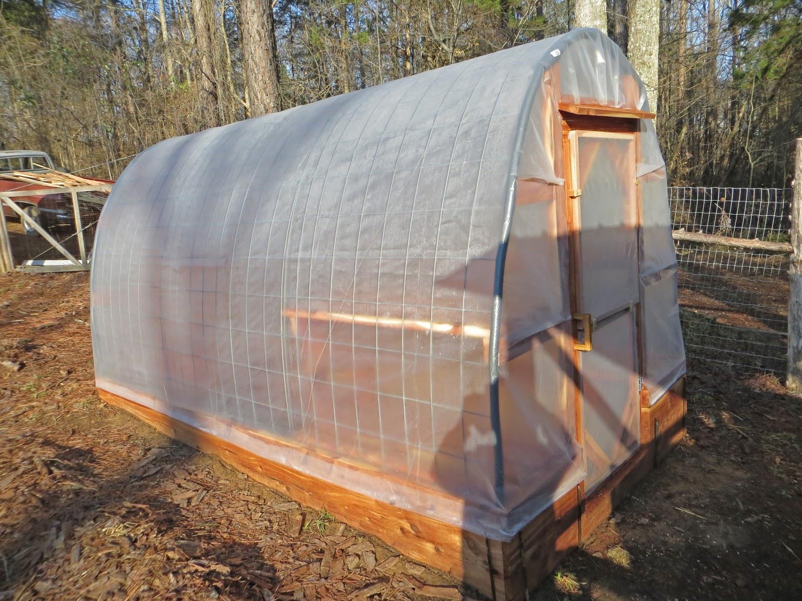 Maitri Homestead Diy Greenhouse Using Cattle Panels