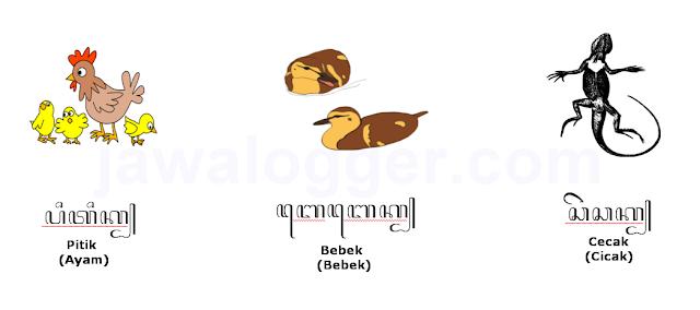 contoh nama-nama hewan dalam aksara jawa