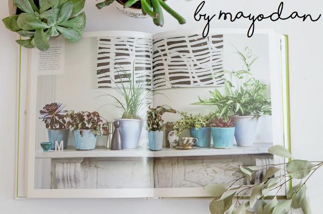 Buch Zimmer mit Pflanze
