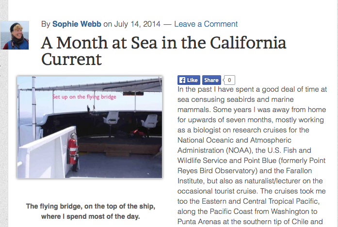 http://otwtb.birdwatchersdigest.com/uncategorized/a-month-at-sea-in-the-california-current/