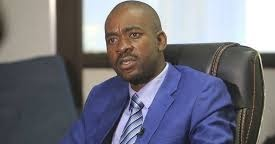 MDC MOTHER OF ALL DEMOS LOOMS