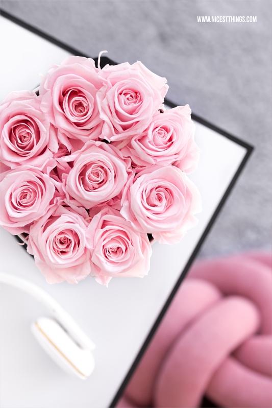 Flowerbox mit rosa Rosen Infinity Roses