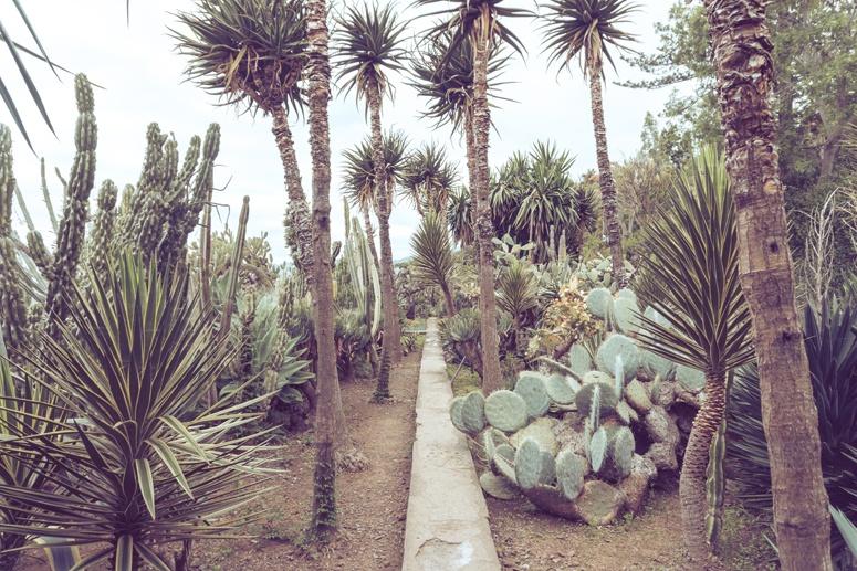 Ogród botaniczny w Funchal