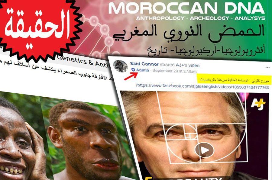 Moroccan DNA Genetics & Anthropology