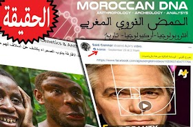 حقيقة صفحة: أصول الشعب المغربي Moroccan DNA Genetics & Anthropology