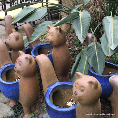 garden decor cat pots at Full House Restaurant at Sun Moon Lake in Taiwan