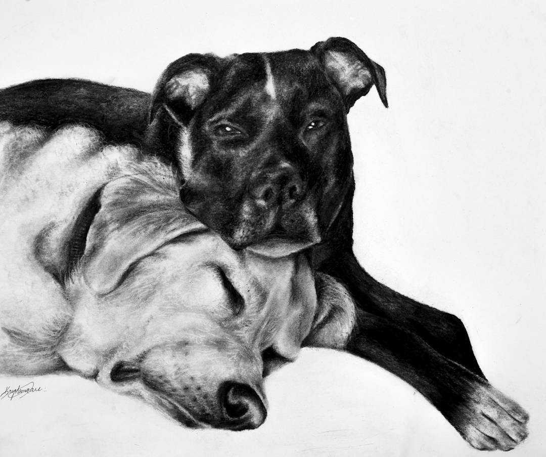 12-Taking-a-Nap-Krystan-Grace-Humans-and-Dogs-Charcoal-Portrait-Drawings-www-designstack-co