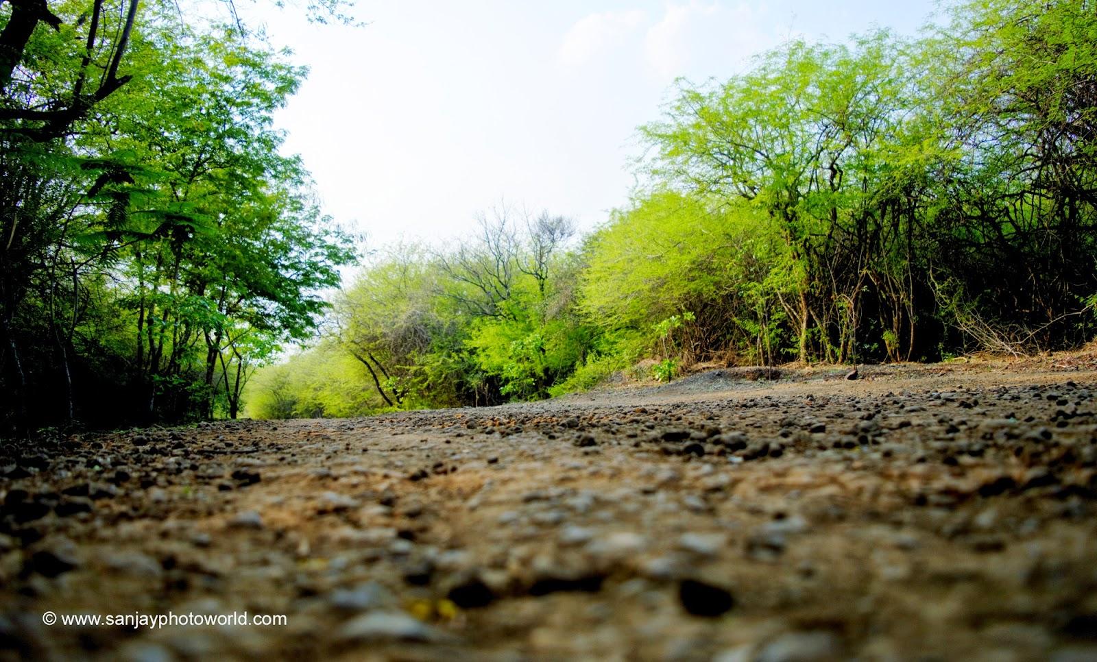 Sanjay Photo World Hd Nature Wallpapers