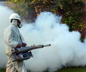 desinfecciones plagas sevilla