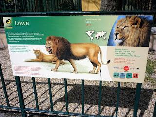placuta cu informatii despre lei
