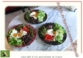 Vie quotidienne de FLaure: Salade de légumes (sans féculent)