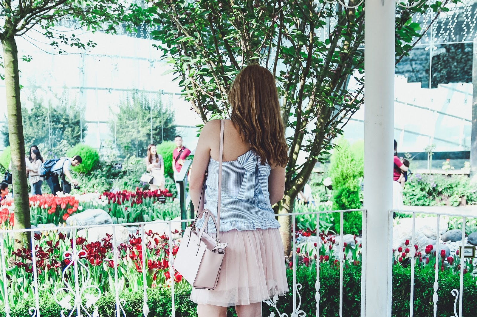 Everything You Need To Know About Visiting Gardens by the Bay: The Flower Dome