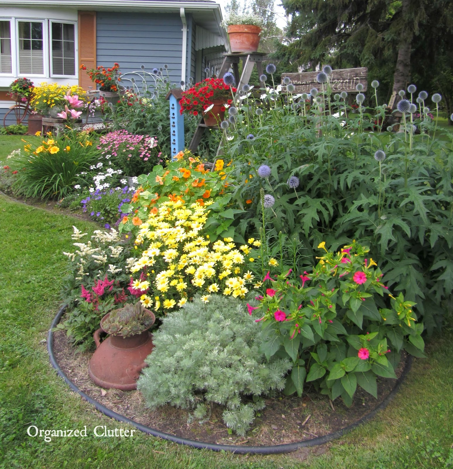 Flower Gardening Before & Afters