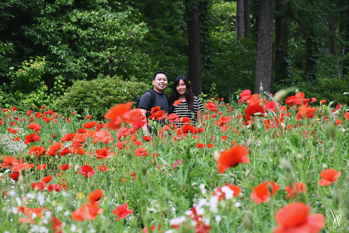 couple and red flowers