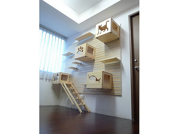 Kediler İçin Güzel Tasarımlar