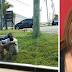 Για 3 χρόνια έβλεπε έναν άστεγο να κλαίει έξω από το σπίτι της. Όταν τον ρώτησε τον λόγο, έμαθε κάτι το σοκαριστικό!