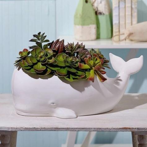 White Ceramic Whale Planter