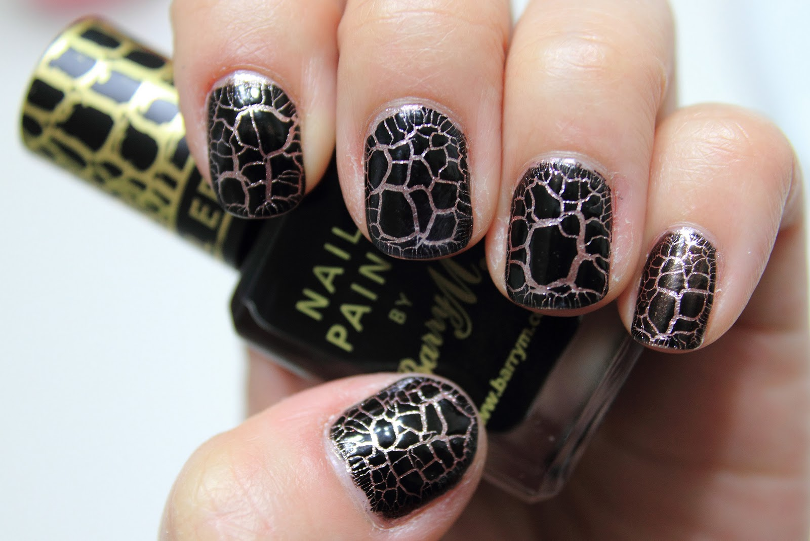 Nunu Will Blog For Chicken Wings Barry M Croc Nail Effects